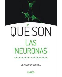 QUE SON LAS NEURONAS